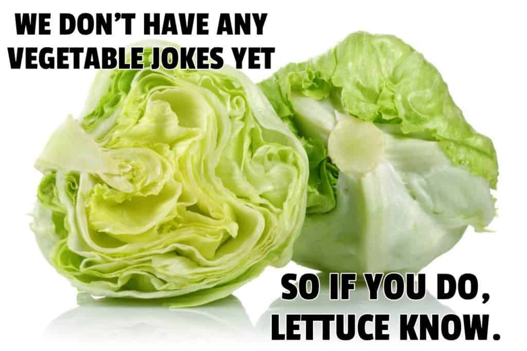 WE DONT HAVE ANY VEGETABLE JOKES YET SO IF YOU DO LETTUCE KNOW