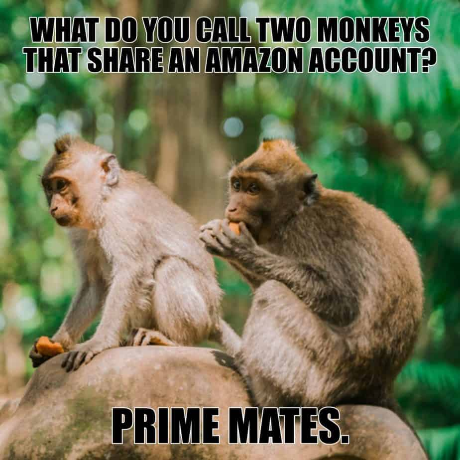 What do you call two monkeys that share an Amazon account Prime mates