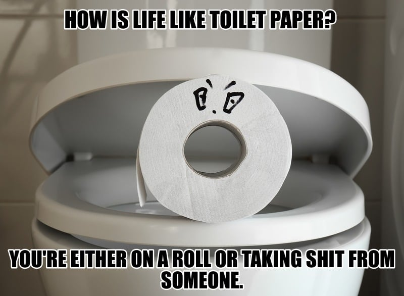 How is life like toilet paper Youre either on a roll or taking shit from someone