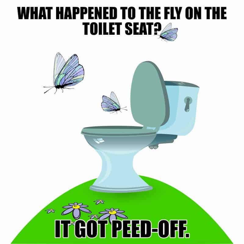 What happened to the fly on the toilet seat It got peedoff