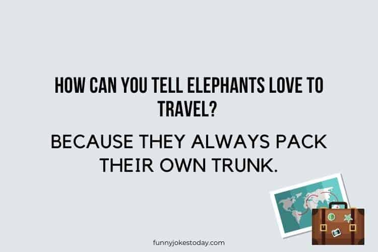 Travel Jokes - How can you tell elephants love to travel?