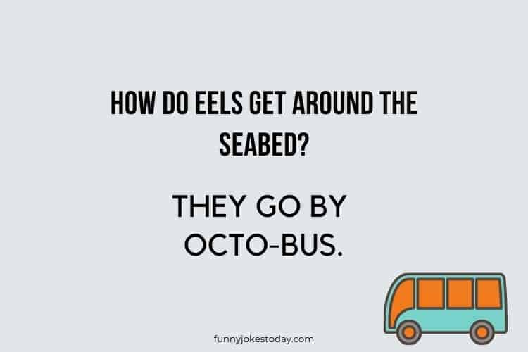 Bus Driver Jokes - How do eels get around the seabed?