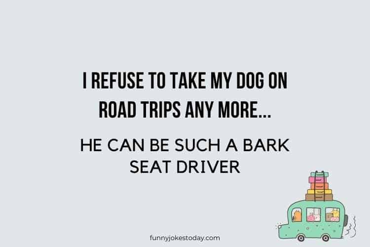 Road Trip Jokes - I refuse to take my dog on road trips any more.