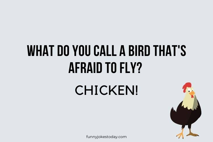 Chicken Jokes - What do you call a bird that's afraid to fly?