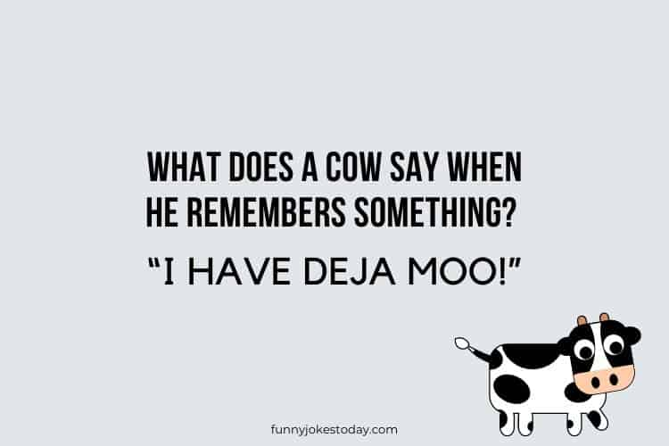 Cow Jokes - What does a cow say when he remembers something?