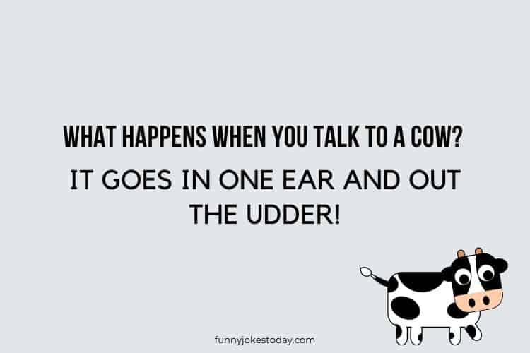 Cow Jokes - What happens when you talk to a cow?