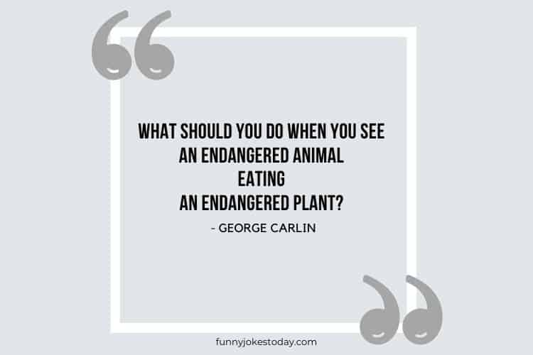 Jokes Quotes - What should you do when you see an endangered animal eating an endangered plant?