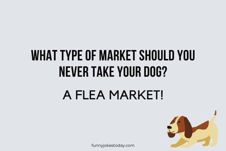 Dog Jokes - What type of market should you NEVER take your dog?