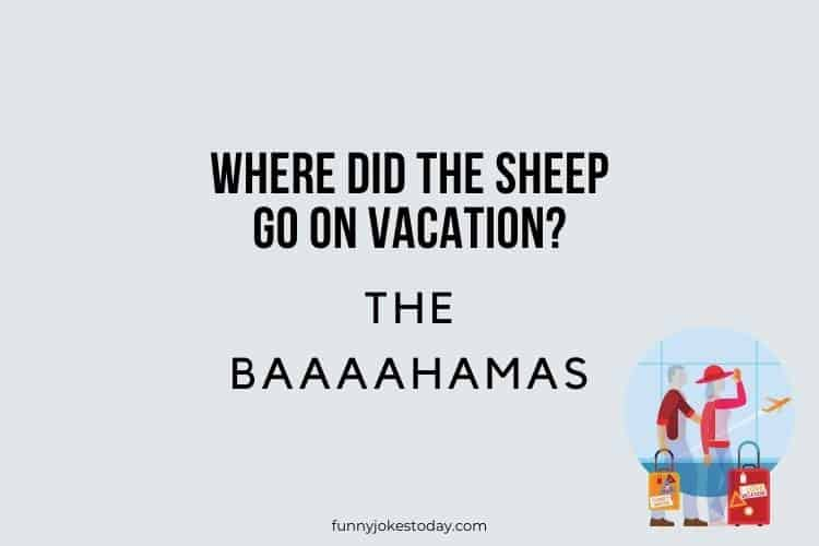 Vacation Jokes - Where did the sheep go on vacation?