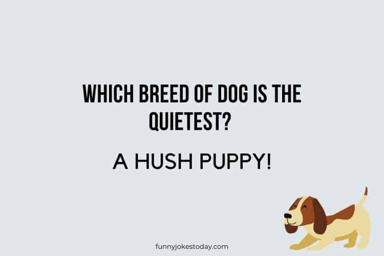 Dog Jokes - Which breed of dog is the quietest?