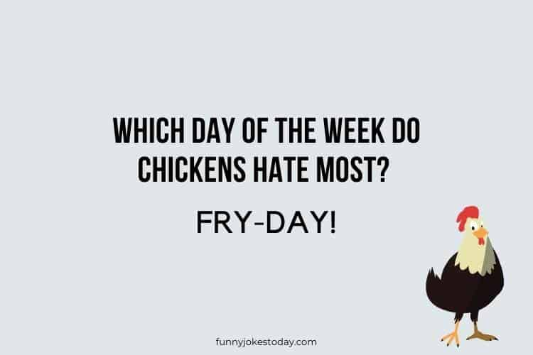 Chicken Jokes - Which day of the week do chickens hate most?