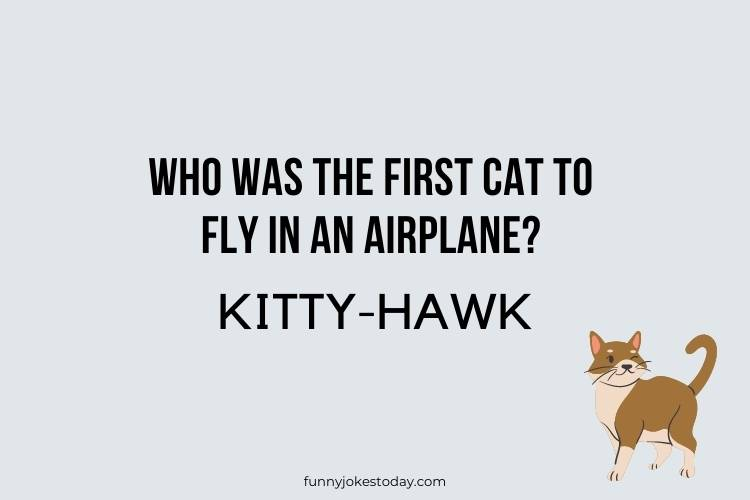 Cat Jokes - Who was the first cat to fly in an airplane?