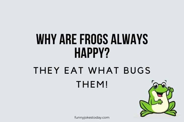 Animal Jokes - Why are frogs always happy?