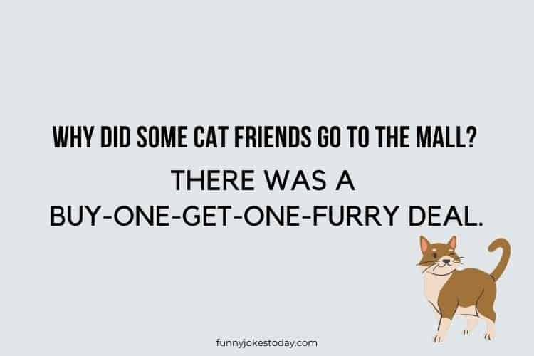 Cat Jokes - Why did some cat friends go to the mall?