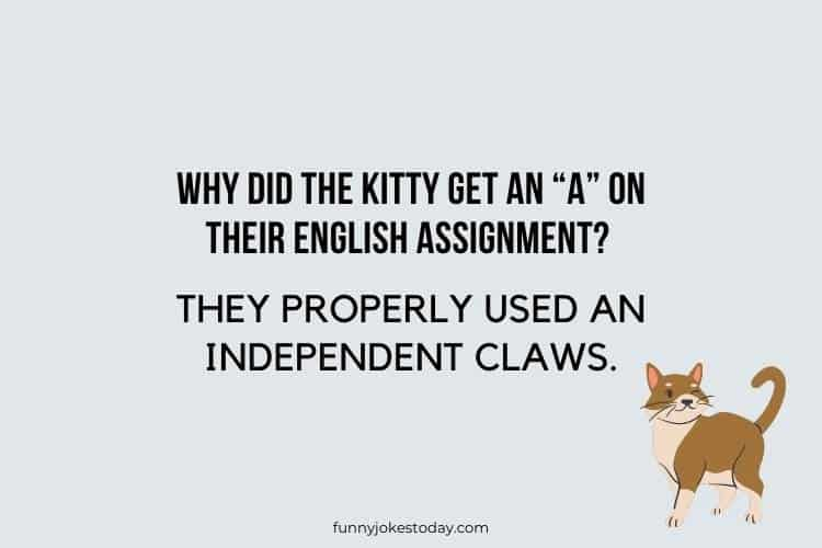 """Cat Jokes - Why did the kitty get an """"A"""" on their English assignment?"""